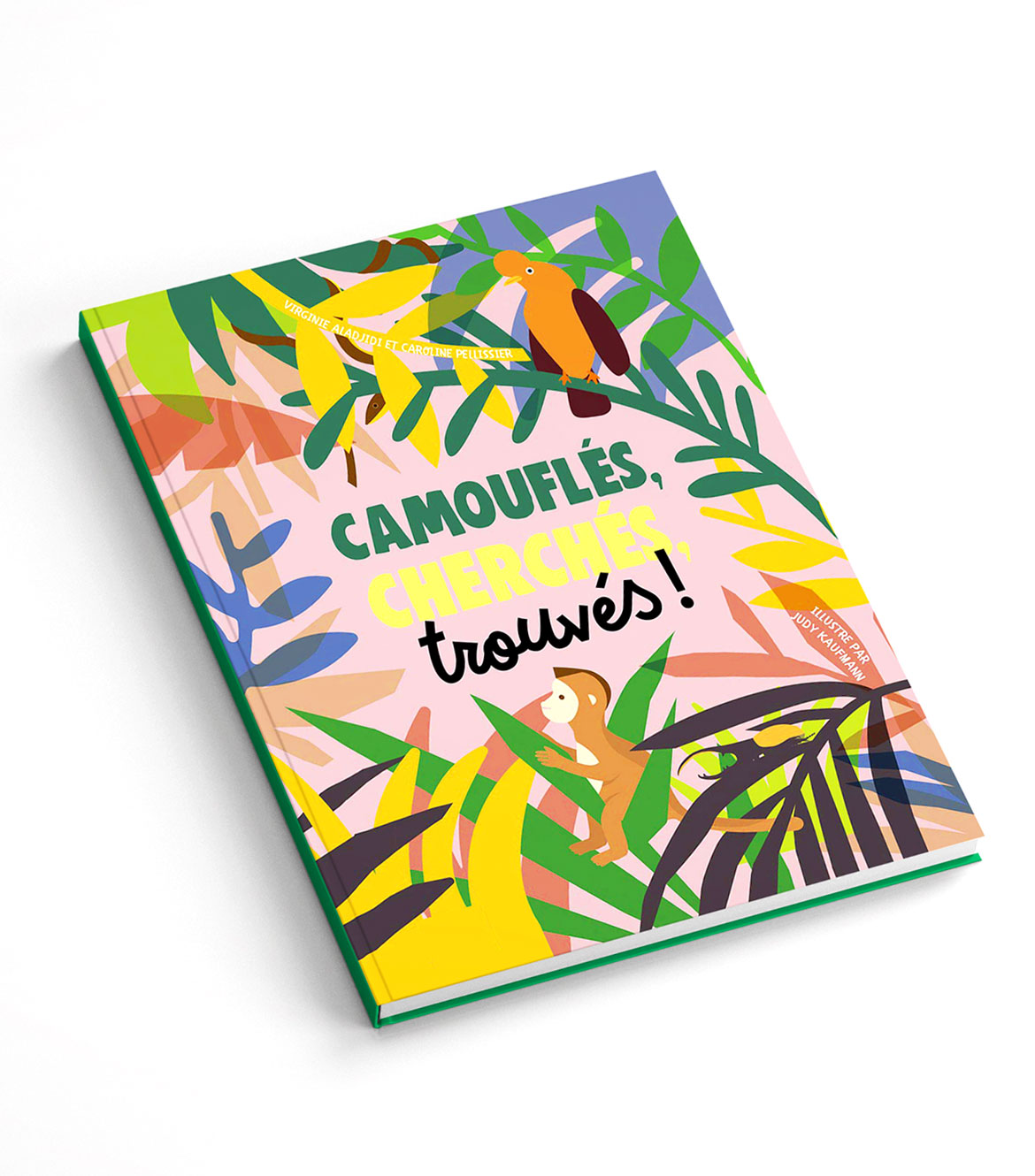 camoufles-cover-final